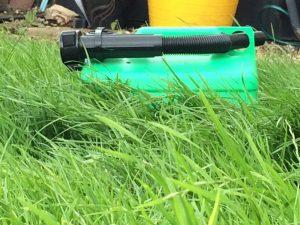 petrol can grass